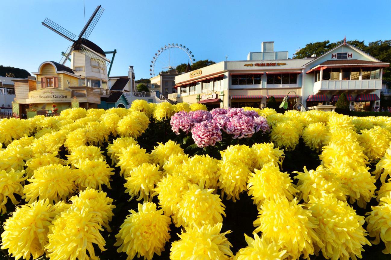 国庆节连休游韩国,爱宝乐园贴心优惠迎客人