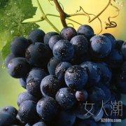 多吃紫色水果 秋季消水肿又美容